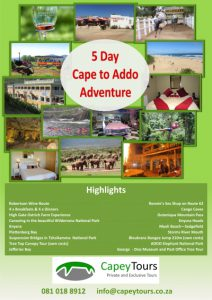 Poster Capey Tours